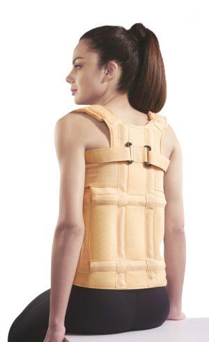 Taylor Brace ( Dorso Lumbar Spinal Brace )